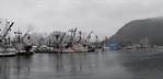 NOAA-led study shows Alaska fisheries and communities at risk from ocean acidification